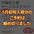 不織布3層サージカルマスク(KN95)ホワイト(2,000枚入)締切