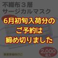 6月初旬/不織布3層サージカルマスクホワイト(500枚入)