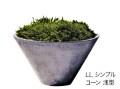 軽くてシンプルな鉢 リードライト LLシンプルコーン 浅型(2個セット)