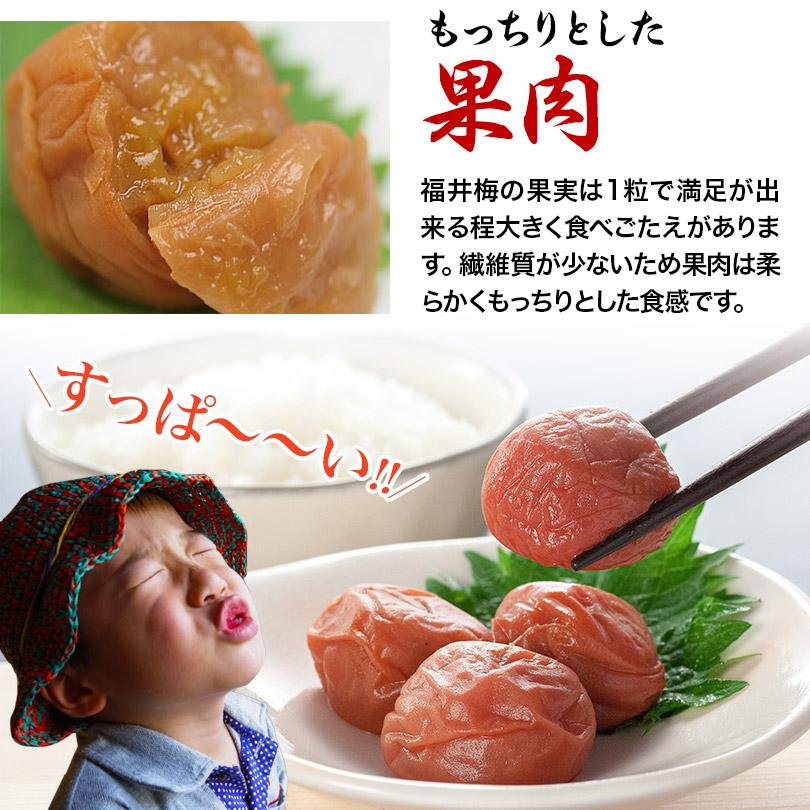 【無添加】しそ漬福梅ぼし1100g   福井県産/手土産/酸っぱい/贈り物