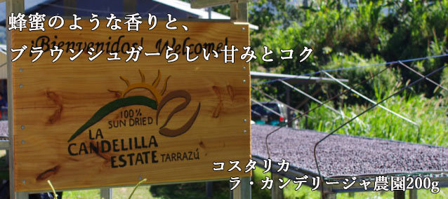 【バランスのとれた甘みとコク】コスタリカ ラ・カンデリージャ農園200g