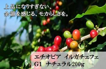 【爽やかな酸味】エチオピア イルガチェフェ G1 ナチュラル200g