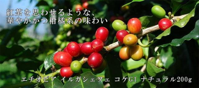 【爽やかな酸味】エチオピア イルガシェフェ コケG1 ナチュラル200g