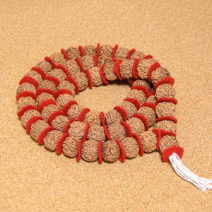 [1連54粒+親玉1個]インド菩提樹ルドラクシャ数珠カンタ(5面・21mm・ナチュラル色)