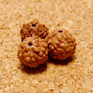 [10個セット]6面・6ムキ-インド菩提樹ルドラクシャの実7mm玉(ナチュラルカラー)