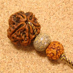 【SivaとGanesh Wの恩恵】インド菩提樹ルドラクシャ特大23mmチョーカーネックレス-天然石ジャスパー&ミニルド仕立て