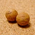 [108個+親玉1個セット]鳳眼菩提樹ビーズ(ナチュラル)12-13mm/S2サイズ