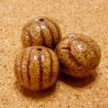 [特大108個+親玉1個セット]縞星月菩提樹ビーズ(15-16mm/ナチュラル色・無漂白)
