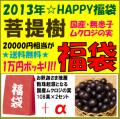 [2013年☆福袋]国産ムクロジの実(無患子)108果*2セット+αの詰め合わせ