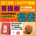 [2013年☆福袋]インド菩提樹ルドラクシャ108果(ナチュラル色)+αの詰め合わせ