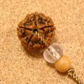 【心の平穏】インド菩提樹ルドラクシャ特大23mmチョーカーネックレス-クリスタル水晶仕立て