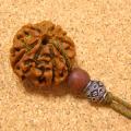 【ルドラ神の恩恵】インド菩提樹ルドラクシャ特大23mmチョーカーネックレス-シルバー925ビーズ仕立て