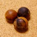 【超・訳あり】[希少レア:108個+親玉1個セット]赤黒ムクロジの実ビーズ(無患子/数珠起源となる木の実)