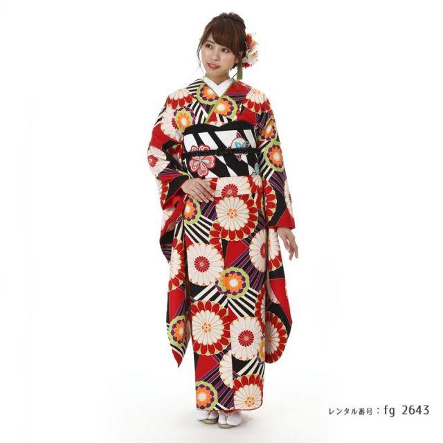 【成人式用】振袖レンタル(fg_2643)FR1673 手綱に菊