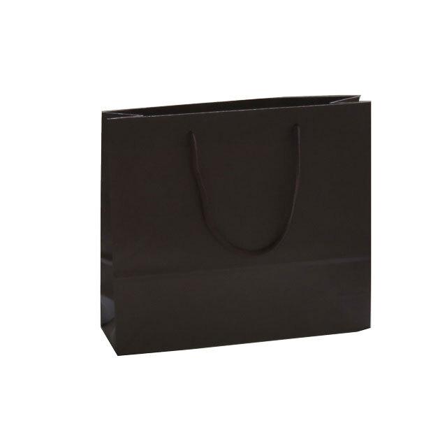 手提げ袋(紙袋 個包装   10粒・20粒)