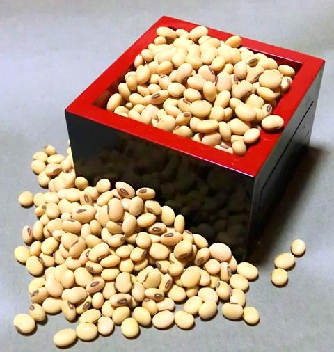 みさを大豆