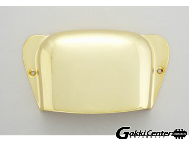 Allparts Gold Bridge Cover for Precision Bass/6599