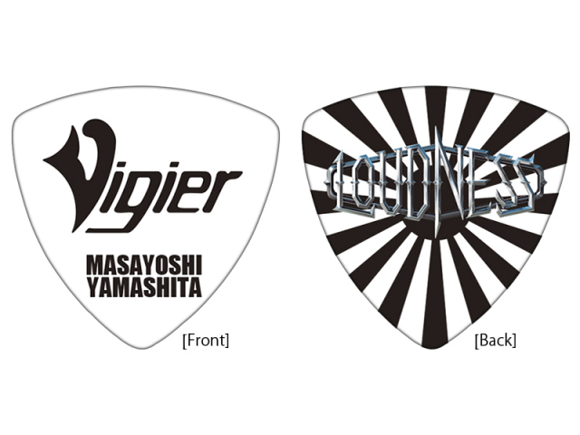 Vigier YM-PICK BRS 20枚セット!
