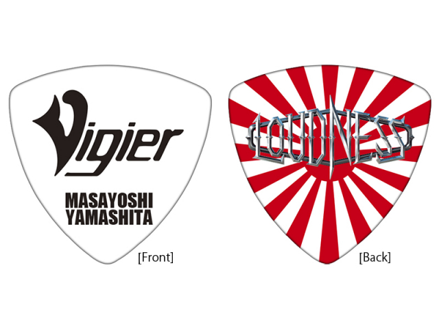 Vigier YM-PICK RRS 20枚セット!