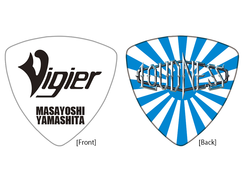 Vigier YM-PICK BLRS 20枚セット!