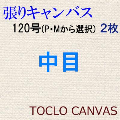 純麻手張りキャンバス 中目 120号(P・Mから選択) 2枚組