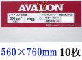 アヴァロン水彩紙  中目 300g 560×760mm 10枚組