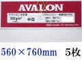 アヴァロン水彩紙  中目 300g 560×760mm 5枚組