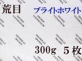 アルシュ水彩紙 ブライトホワイト 荒目 300g 560×760mm 5枚組