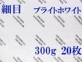 アルシュ水彩紙 ブライトホワイト 細目 300g 560×760mm 20枚組