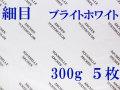 アルシュ水彩紙 ブライトホワイト 細目 300g 560×760mm 5枚組