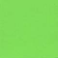 EP021 ライトグリーン 500ml[ホルベイン イージーペイント]