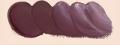 ホルベイン油絵具 カドミウム マルーン