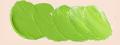 ホルベイン油絵具 パーマネント グリーン ライト