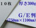 モンバル水彩紙 中目<厚さ300g>GE判(1,100mm×750mm) 10枚