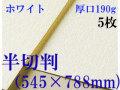ミューズ ホワイトワトソン<厚口190g>半切判(545×788mm) 5枚