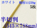 ミューズ ホワイトワトソン<特厚口239g>半切判(545×788mm) 5枚