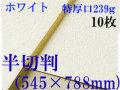 ミューズ ホワイトワトソン水彩紙<特厚口239g>半切判(545×788mm) 10枚 中目