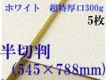 ミューズ ホワイトワトソン<超特厚口300g>半切判(545×788mm) 5枚