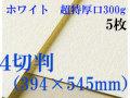 ミューズ ホワイトワトソン<超特厚口300g>4切判(394×545mm) 5枚