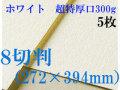 ミューズ ホワイトワトソン<超特厚口300g>8切判(272×394mm) 5枚