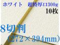 ミューズ ホワイトワトソン<超特厚口300g>8切判(272×394mm) 10枚
