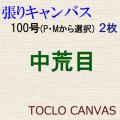 純麻手張りキャンバス 中荒目 100号(P・Mから選択) 2枚組