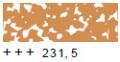 231.5 ゴールドオーカー [レンブラントソフトパステル]