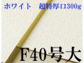 ミューズ ホワイトワトソン水彩紙 F40号大(843×1040mm)<超特厚口300g> 3枚/1箱