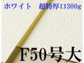 MUSE-WATOSON-W300-F50