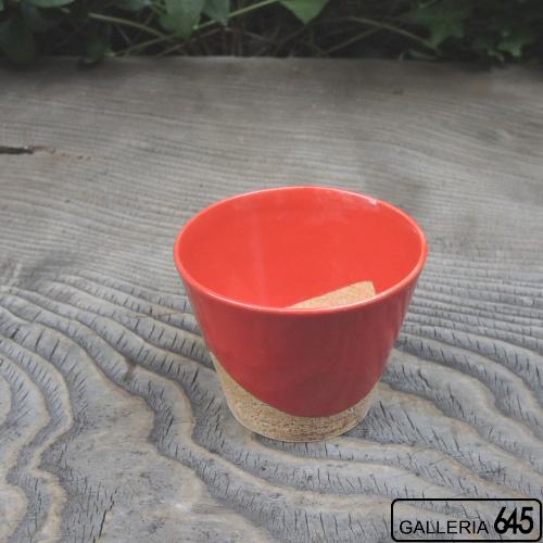 WAKUTAカップ(小・レッド):壹岐幸二:036128
