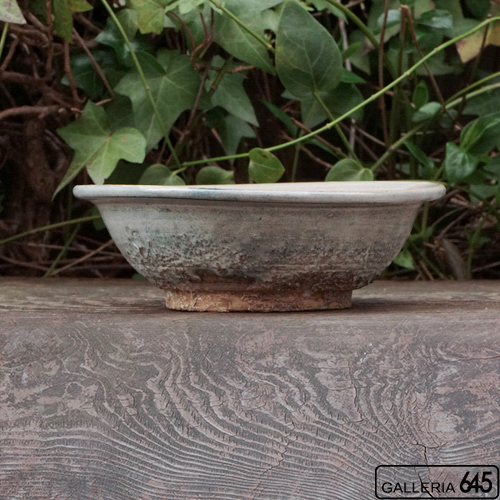 5寸浅鉢:加藤 唯:037010