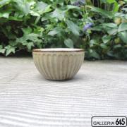 豆小鉢(しのぎ):ポープ奈美:066131