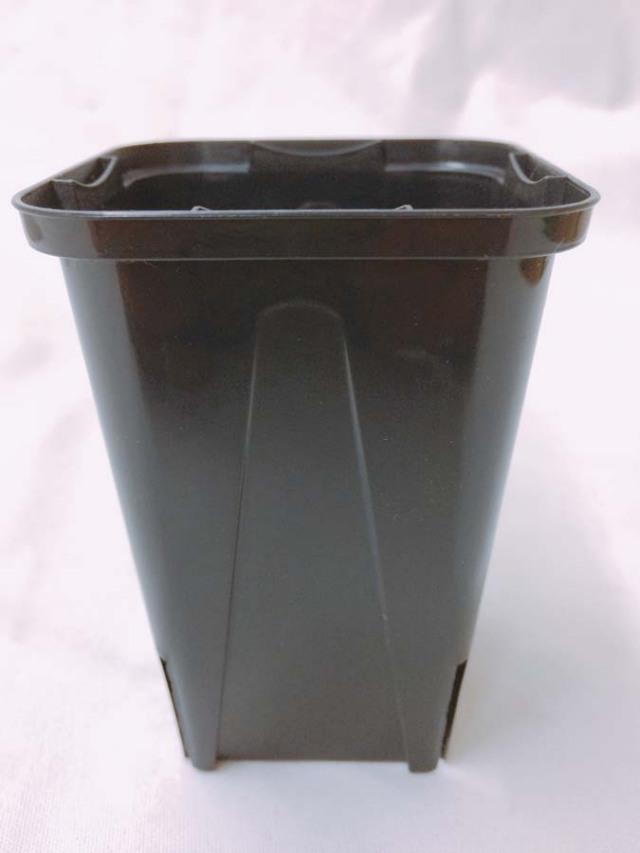 EGスリット鉢  7.5cm 2.5号 黒 ロングタイプ 10個セット EG-75L