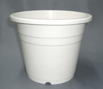 プラ鉢 6PM 白 30個セット